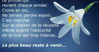 Citation Positive Bonne chance